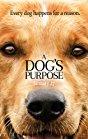 a-dogs-purpose-11574.jpg_Fantasy, Drama, Adventure, Comedy, Family_2017