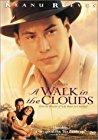 a-walk-in-the-clouds-7928.jpg_Romance, Drama_1995