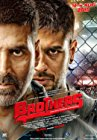 brothers-4804.jpg_Action, Drama, Sport_2015