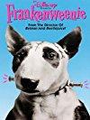 frankenweenie-20618.jpg_Sci-Fi, Drama, Comedy, Short_1984