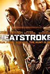 heatstroke-31515.jpg_Drama, Thriller, Action_2013