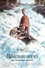 homeward-bound-the-incredible-journey-2355.jpg_Comedy, Family, Drama, Adventure_1993