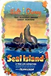 seal-island-33173.jpg_Short, Documentary, Family_1948