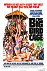 the-big-bird-cage-19217.jpg_Action, Drama, Crime_1972