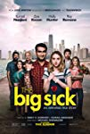 the-big-sick-31465.jpg_Comedy, Romance, Drama_2017