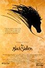 the-black-stallion-15508.jpg_Sport, Adventure, Family_1979