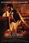 the-pelican-brief-11627.jpg_Crime, Drama, Mystery, Thriller_1993