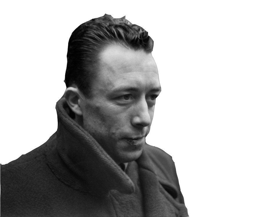 the fall by albert camus essays