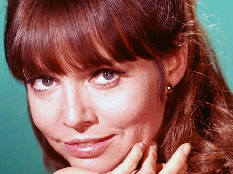 Barbara Feldon actress