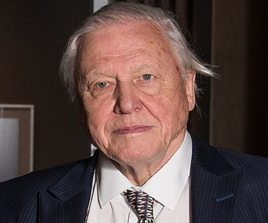 David Attenborough David Attenborough