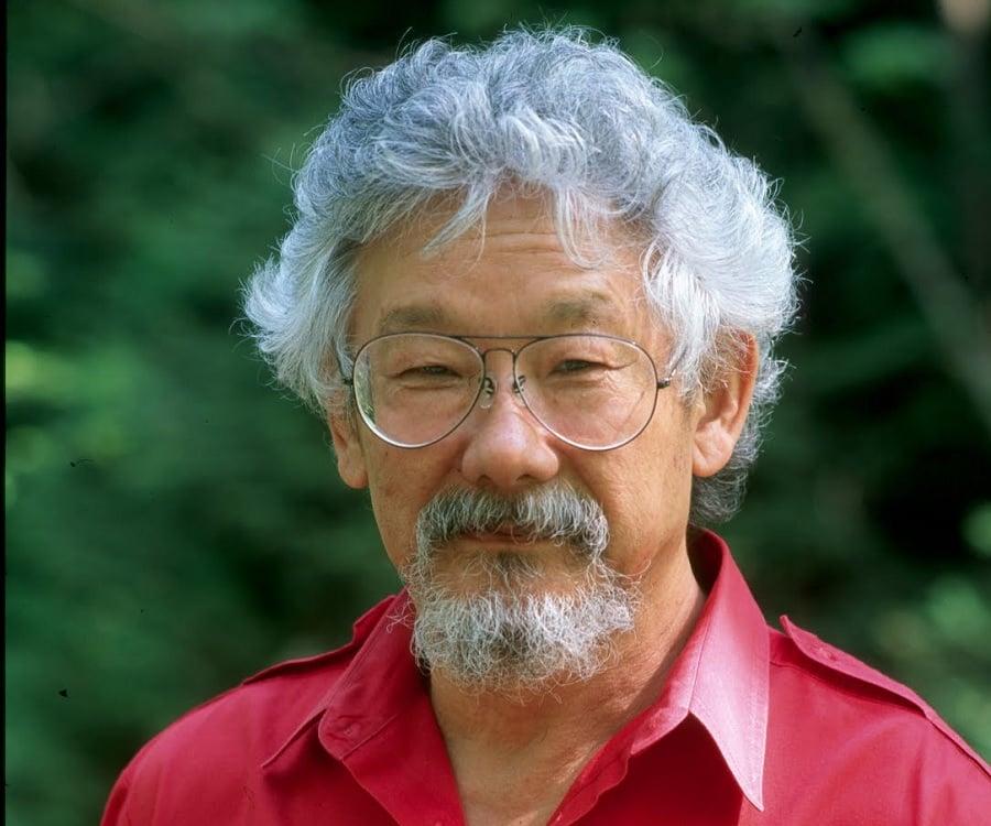 David Suzuki Biography Timeline