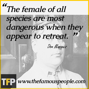 The female of all species are most dangerous when they appear to retreat.
