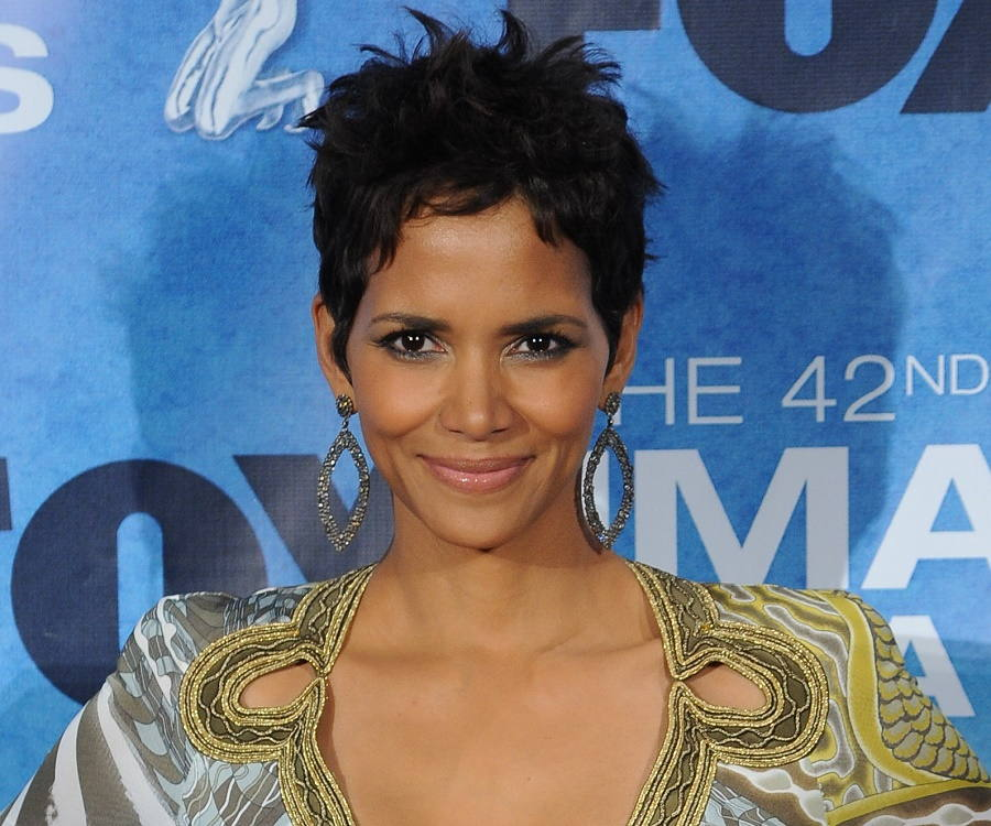 Halle Berry Biography Childhood Life Achievements