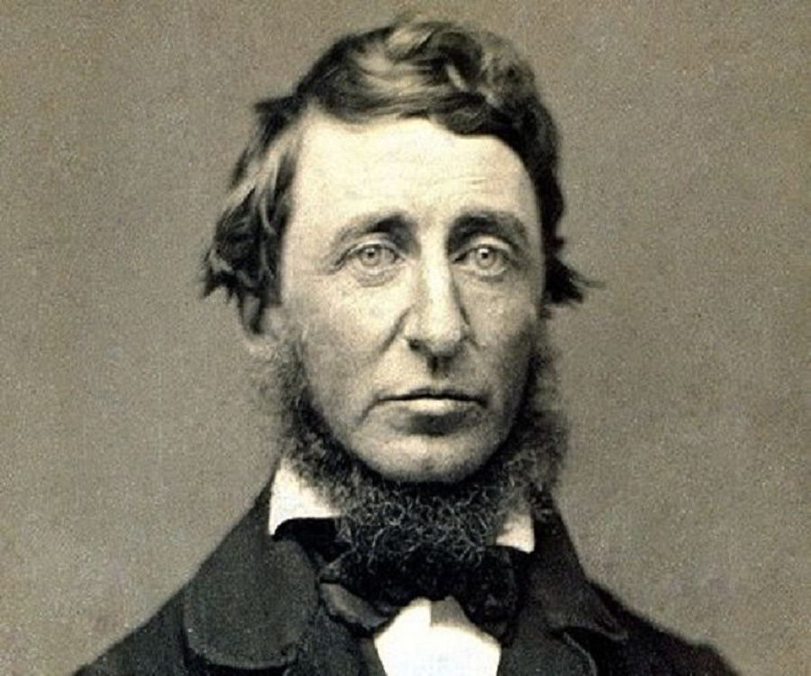 Henry David Thoreau's Best Books & Essays