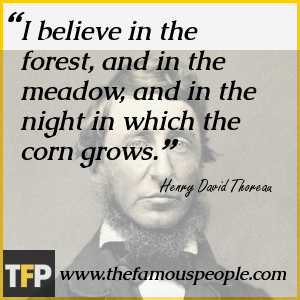 the literary achievements of henry david thoreau Posts about henry david thoreau written by american literature, biography, books, classics, facts, henry david thoreau, literature, thoreau.
