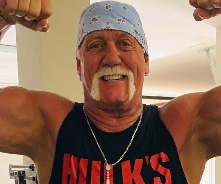Hulk Hogan Biography Childhood Life Achievements Timeline