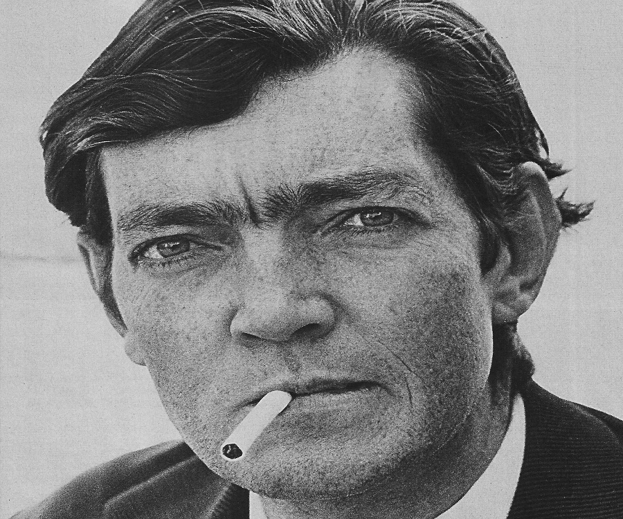 julio cortazar a novelist essay All images by hugo passarello lunaused with permission for argentina and much of the spanish-speaking world, 2014 was an important year it was the centennial of the birth of julio cortázar, a.