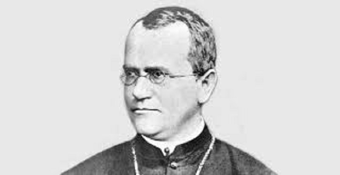 gregor mendal biography Gregor johann mendel (1822-1884) is widely regarded as the the father of genetics mendel was sent to the piarist school in lipnik (leipnik) in 1831 this was followed by grammar school at the.
