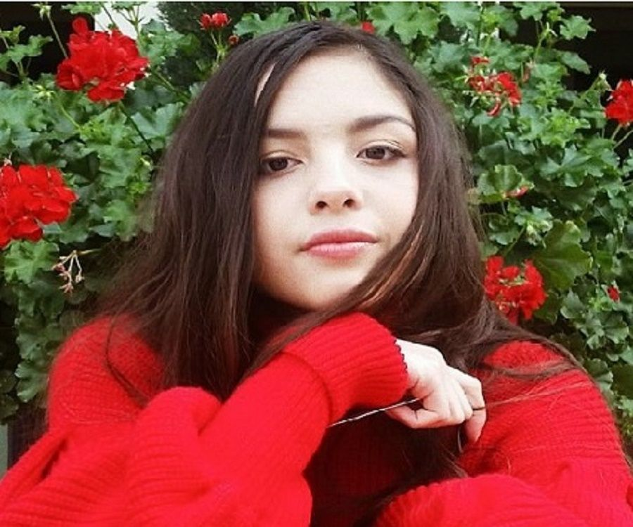 Olivia Rodrigo Bio Facts Family Life Of Actress