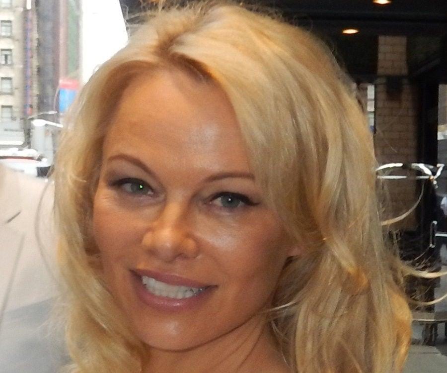 Pamela Anderson Biography - Childhood, Life Achievements ... памела андерсон