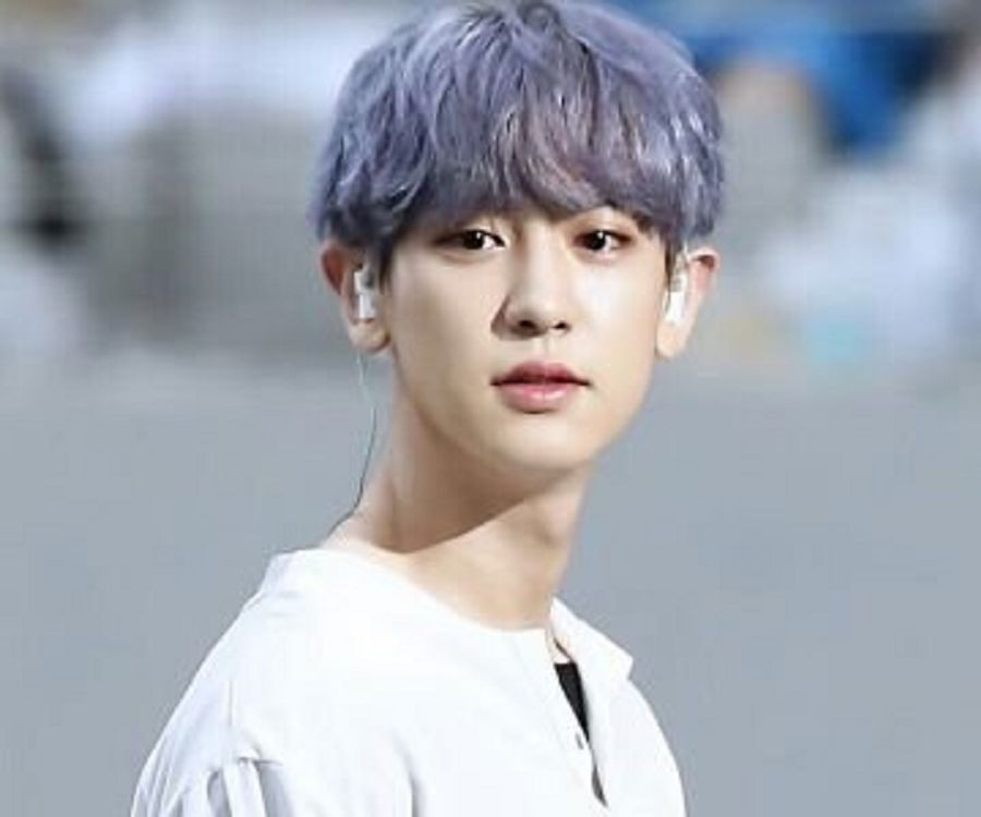 Park Chanyeol Biography Facts Childhood Family Life