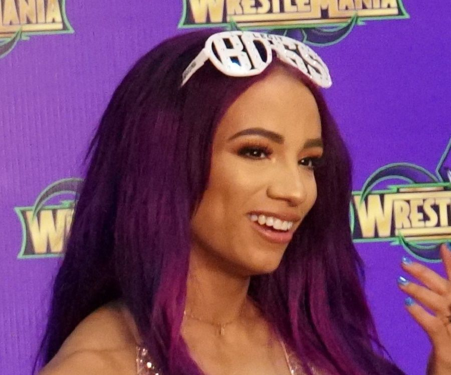 Sasha Banks Biography Facts Childhood Family Life