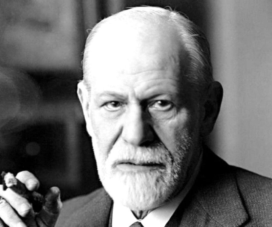 Freud literary culture