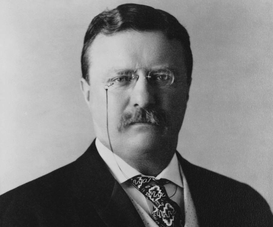 Image result for theodore roosevelt becomes president