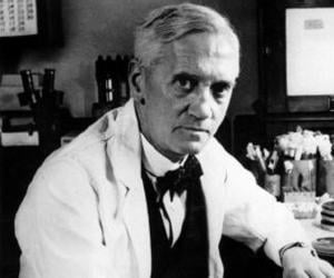 a biography of alexander fleming the one who discovered benzylpenicillin Sir alexander fleming frs frse frcs (6 august 1881 – 11 march 1955) was a  scottish physician, microbiologist, and pharmacologist his best-known  discoveries are the enzyme lysozyme in 1923 and the world's first antibiotic  substance benzylpenicillin (penicillin g) from the mould penicillium  according  to the biography, penicillin man: alexander fleming and the.