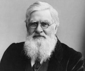 Alfred Russel Wallace biography online