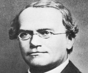 Gregor Mendel<