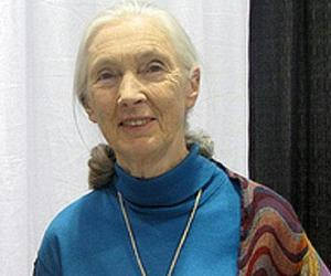 Jane Goodall<