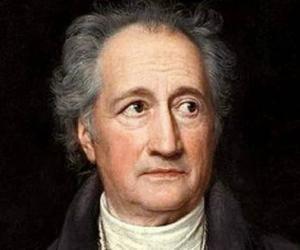 Johann Wolfgang...<