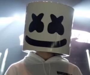 Steve Aoki Biography - Facts, Childhood, Family Life of DJ